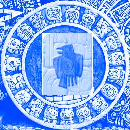 майя подписать сокол